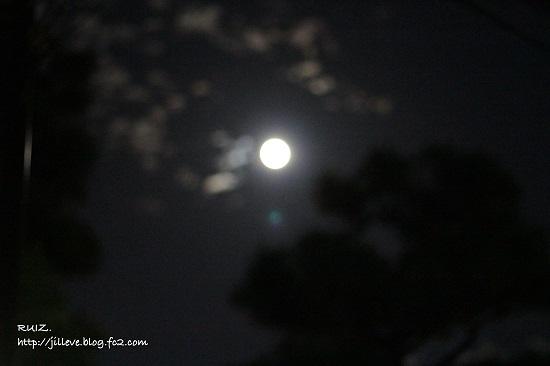 太陽の光、月の光