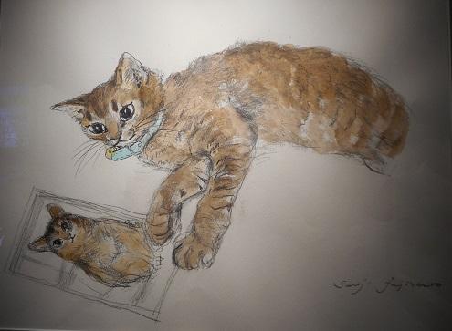 ⑪愛猫ラビィ