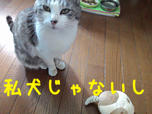 20150825161055fe2.png