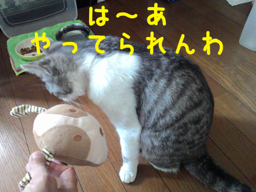 20150825161056afc.png