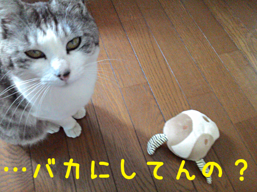 20150825174106761.png