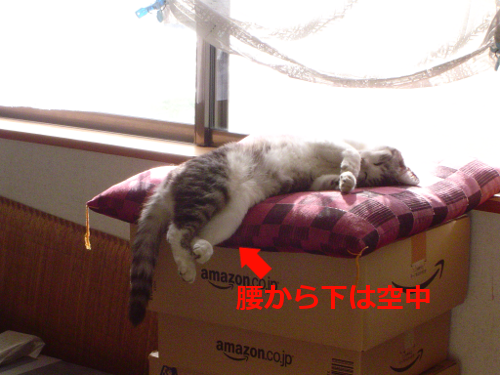 20150830172856546.png