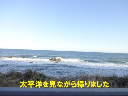 20151019144722084.jpg
