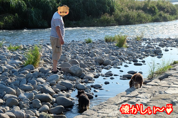 20150921120629200.png