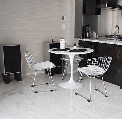 bertoia-chair-protected.jpg