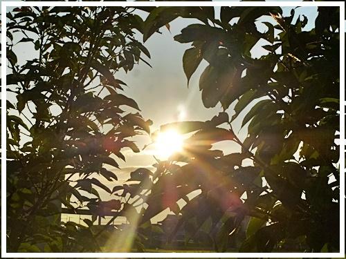 日が沈みかけ