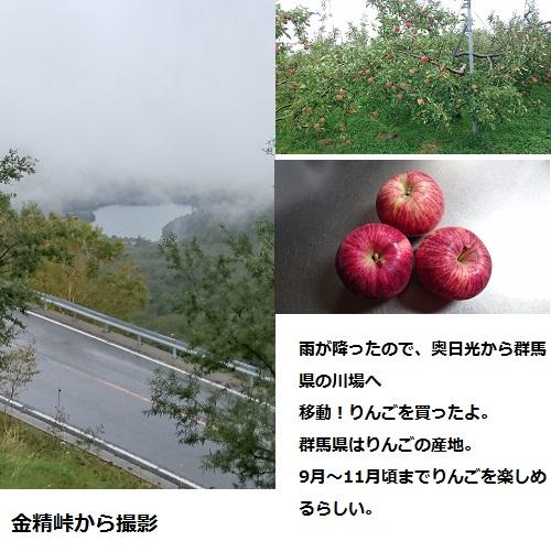 201510010857501ff.jpg