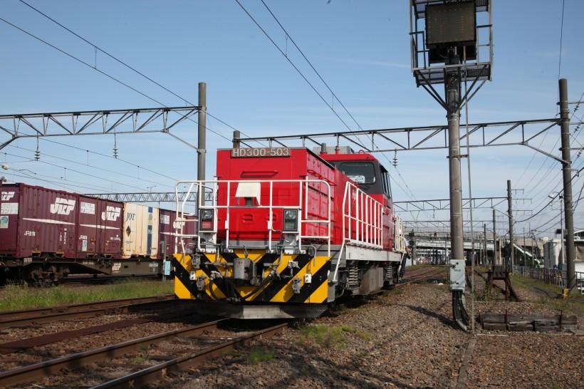 HD503IMG_7875-1.jpg