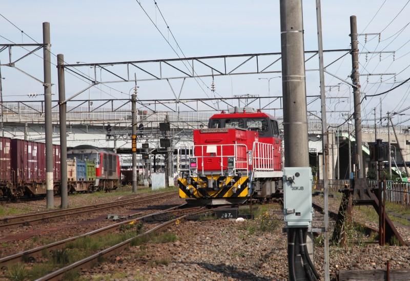 HD503IMG_7877-3.jpg