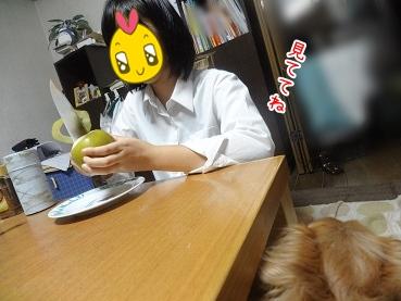 kinako3236.jpg