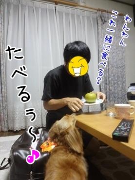 kinako3240.jpg