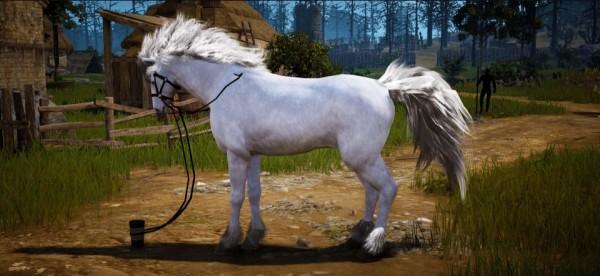 基本プレイ無料の人気のノンターゲティングアクションRPG『黒い砂漠』 9月16日(水)に倉庫や取引所がその場で利用できる「メイド」の実装や馬の8世代の開放を含むアップデートを実施