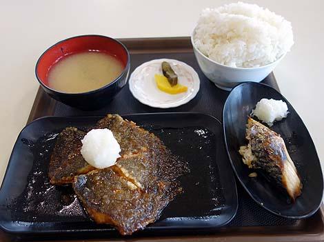 mefureichiba5.jpg