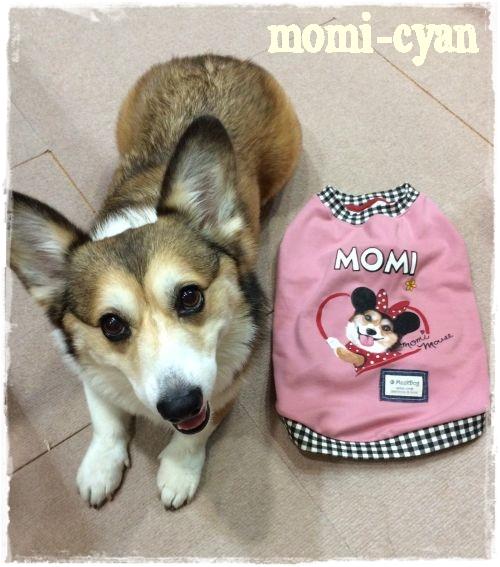 momi57.jpg