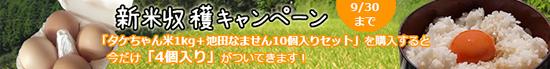 bnr_shinmai_cam.jpg