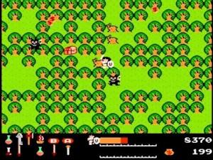 ワルキューレの冒険 ゲーム画面