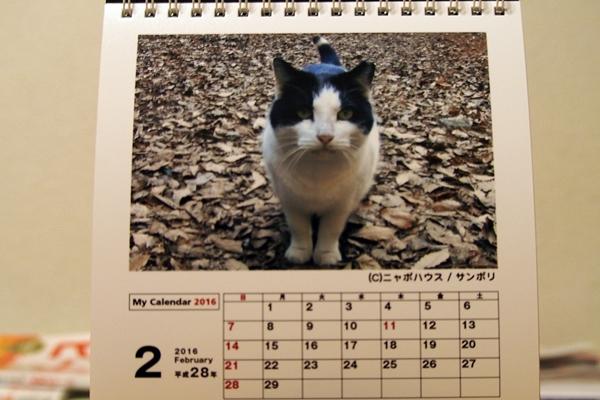 2016年 卓上猫カレンダー 2月