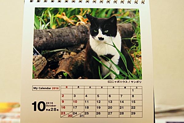 2016年 卓上猫カレンダー 10月