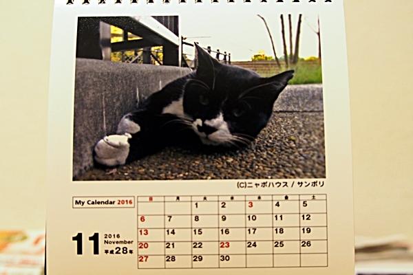 2016年 卓上猫カレンダー 11月