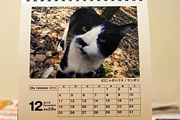 2016年 卓上猫カレンダー 12月