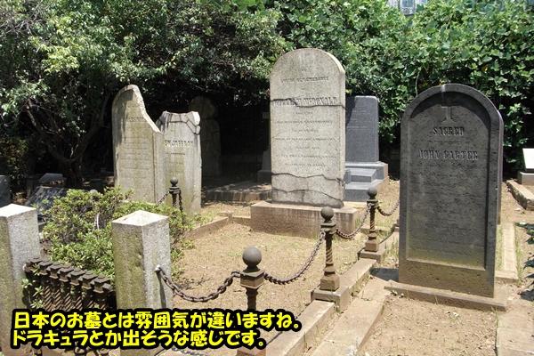 ニャポ旅10 横浜散策編