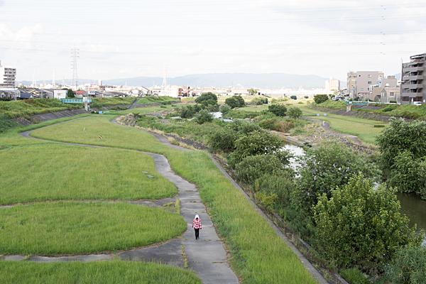 道行き-11