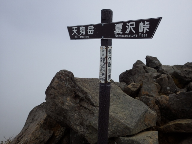 IMGP2957 (640x480)1213根石岳山頂