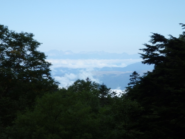 IMGP3071 (640x480)0811夏沢鉱泉