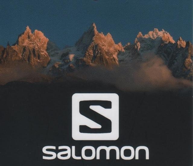 salomon (640x550)