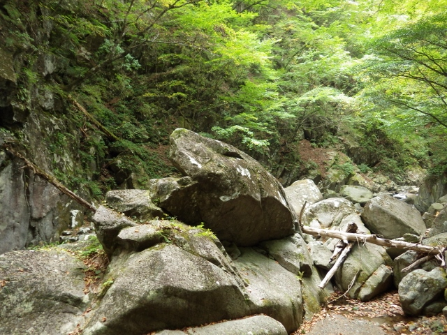 IMGP3146 カエル岩 (640x480)