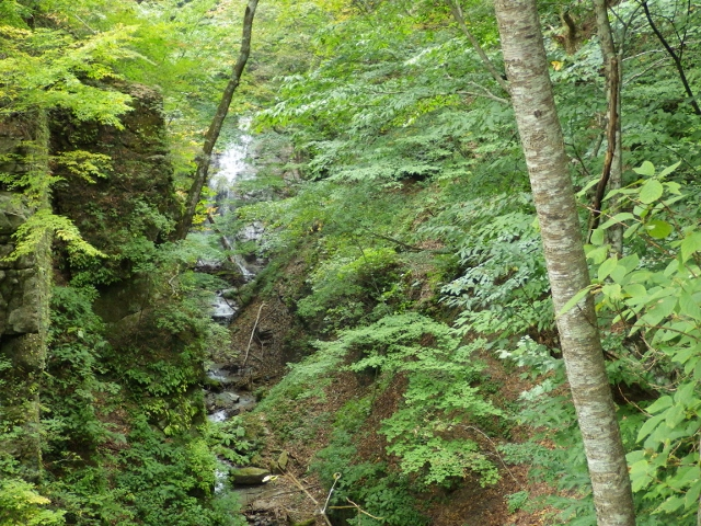 IMGP3179 ナレイ滝 (640x480)