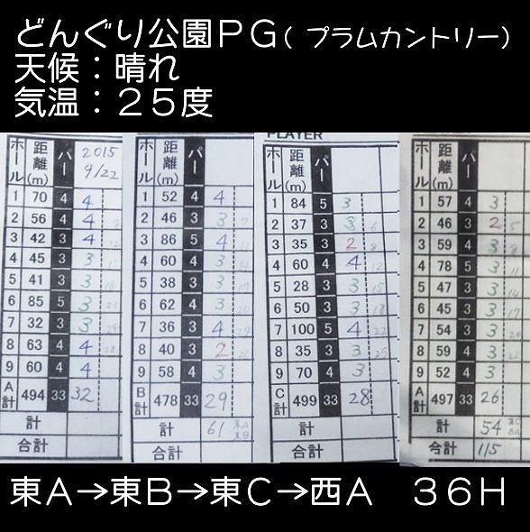 s-更別プラムカントリーPG (24)