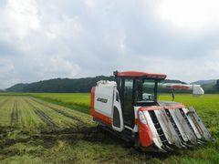 [写真]農園前の田んぼで稲刈り作業の待機をしているコンバイン