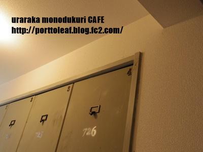 IMGP0480.jpg