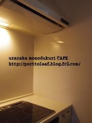 IMGP0500.jpg