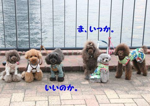 IMG_37762.jpg