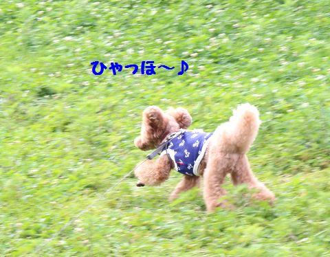 IMG_91412.jpg