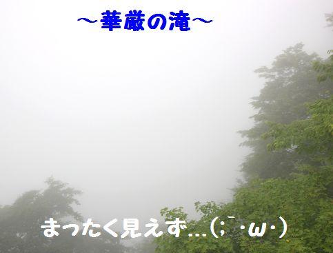 IMG_95772.jpg