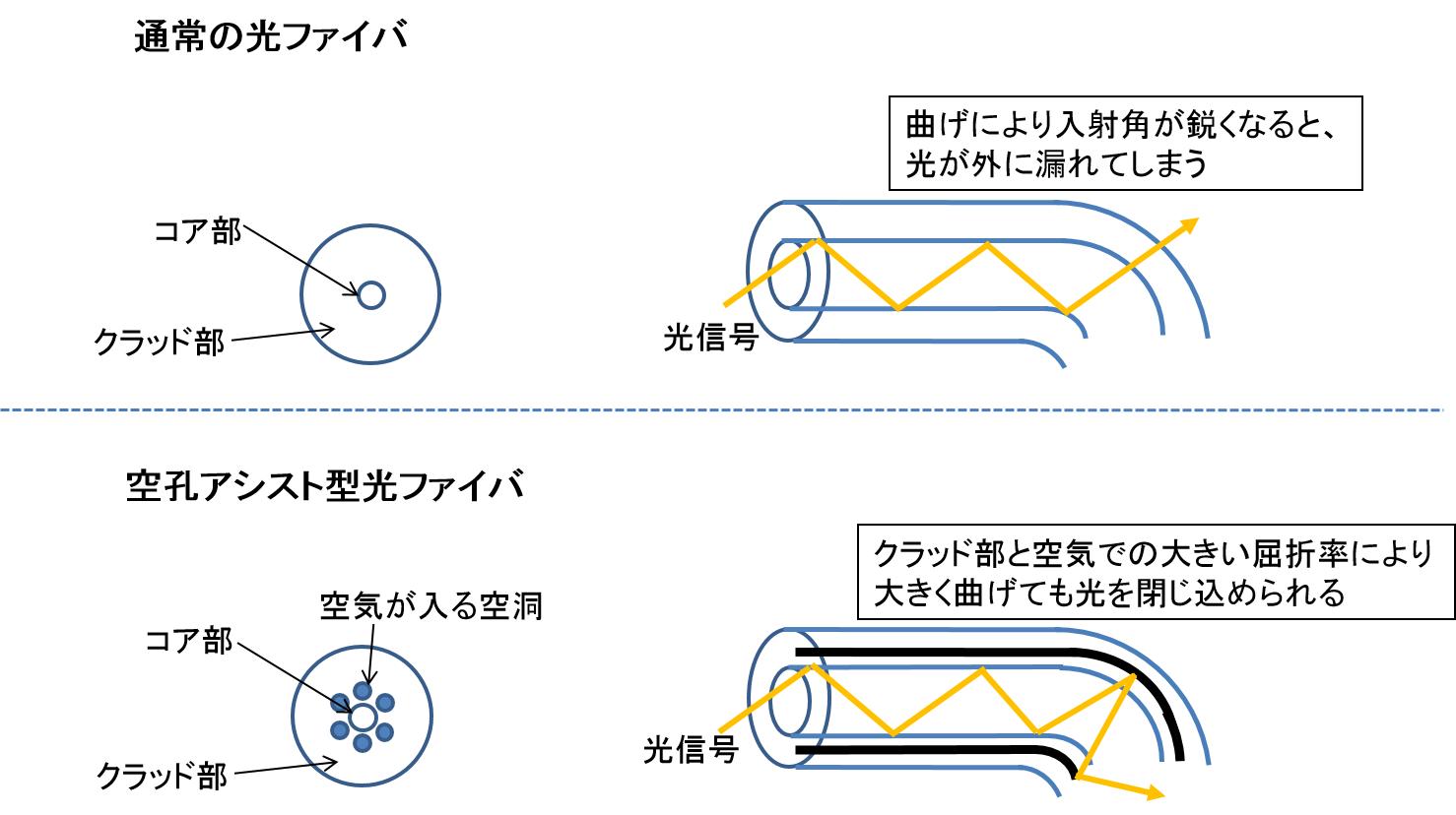 kuko_fiber.jpg