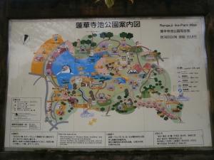 蓮花寺池強化1