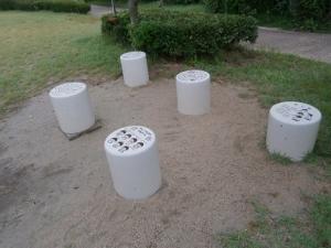 広野海岸公園強化12
