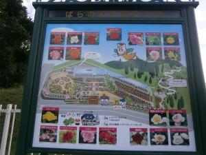 島田中央公園強化17