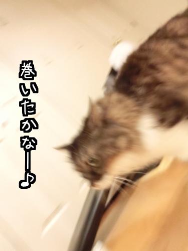 パパラッチぃ5