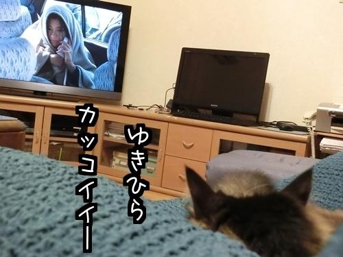 テレビ好き3