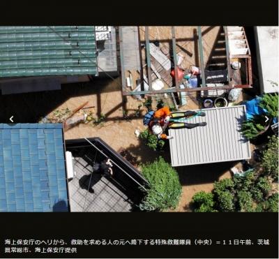茨城県水害 猫救助02