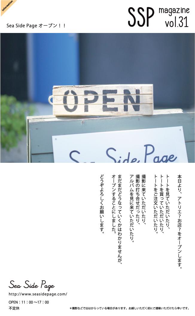 vol31.jpg