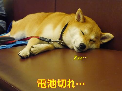 10疲れた
