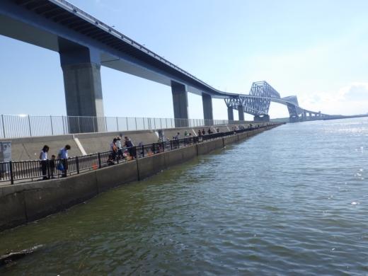 若洲海浜公園 (5)