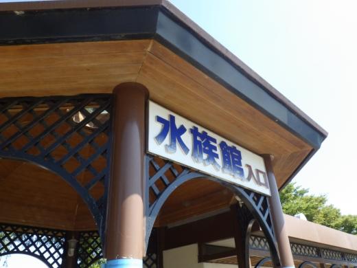 かすみがうら水族館 (2)