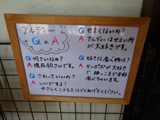 かすみがうら水族館 (6)